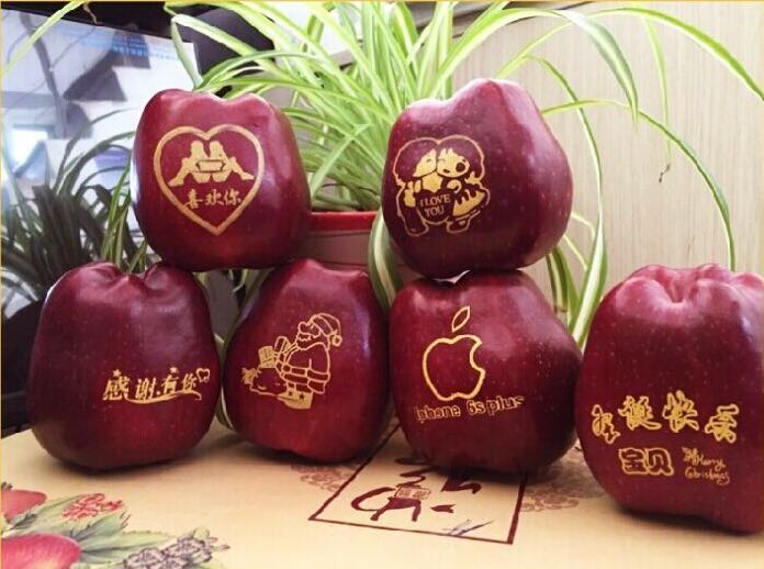 application of edible ink