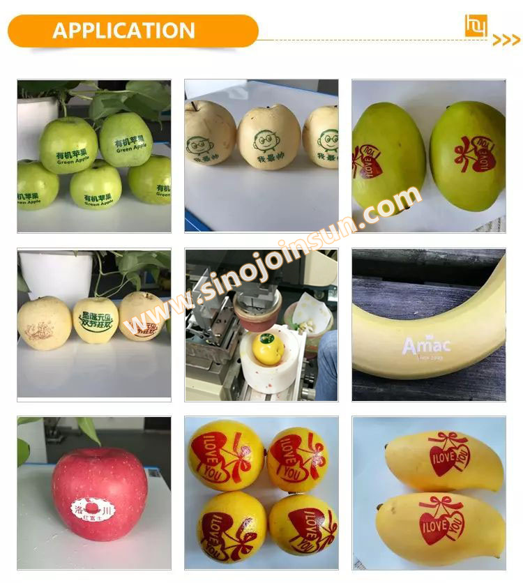 fruit printer-SinoJoinsun_logo